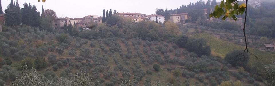 Italy 2014 055